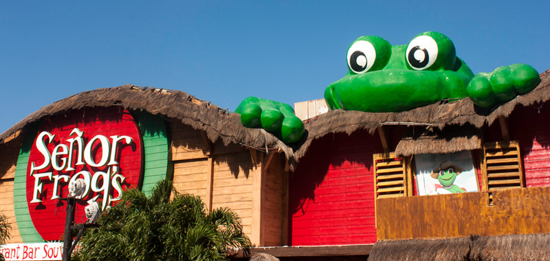 Sr frogs is the best bar / restaurant to party in Cancun. The place ...