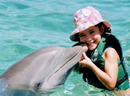 Swim with Dolphins in Puerto Aventuras, Mexican Caribbean