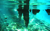 Snorkeling and Diving in Tulum, Mexican Caribbean